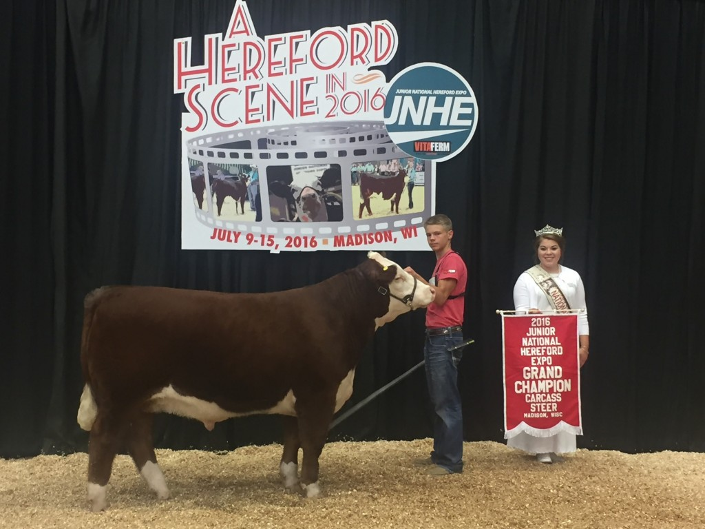 National Champion Hereford Carcass Steer
